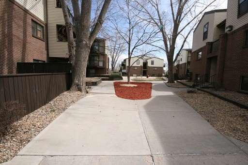 Denver Apartments For Rent. CoverImage