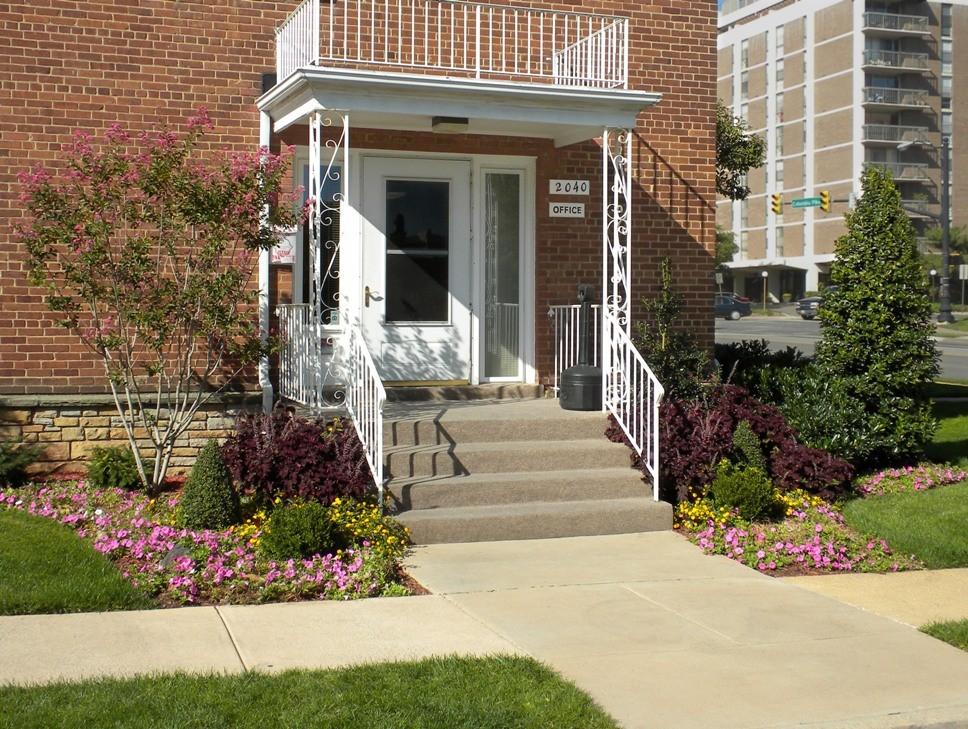 Dorchester Apartments rental