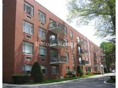 Vernon St 312 Brookline Ma 02446 1 Bedroom Apartment For Rent For 2 210 Month Zumper