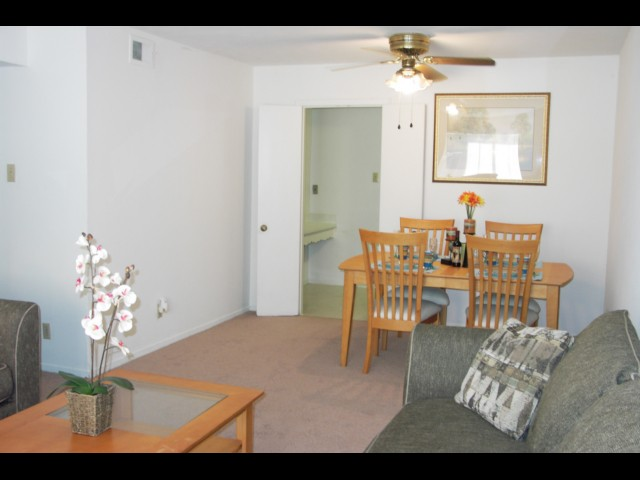 new world 11434 woodmeadow parkway dallas tx 75228 apartment