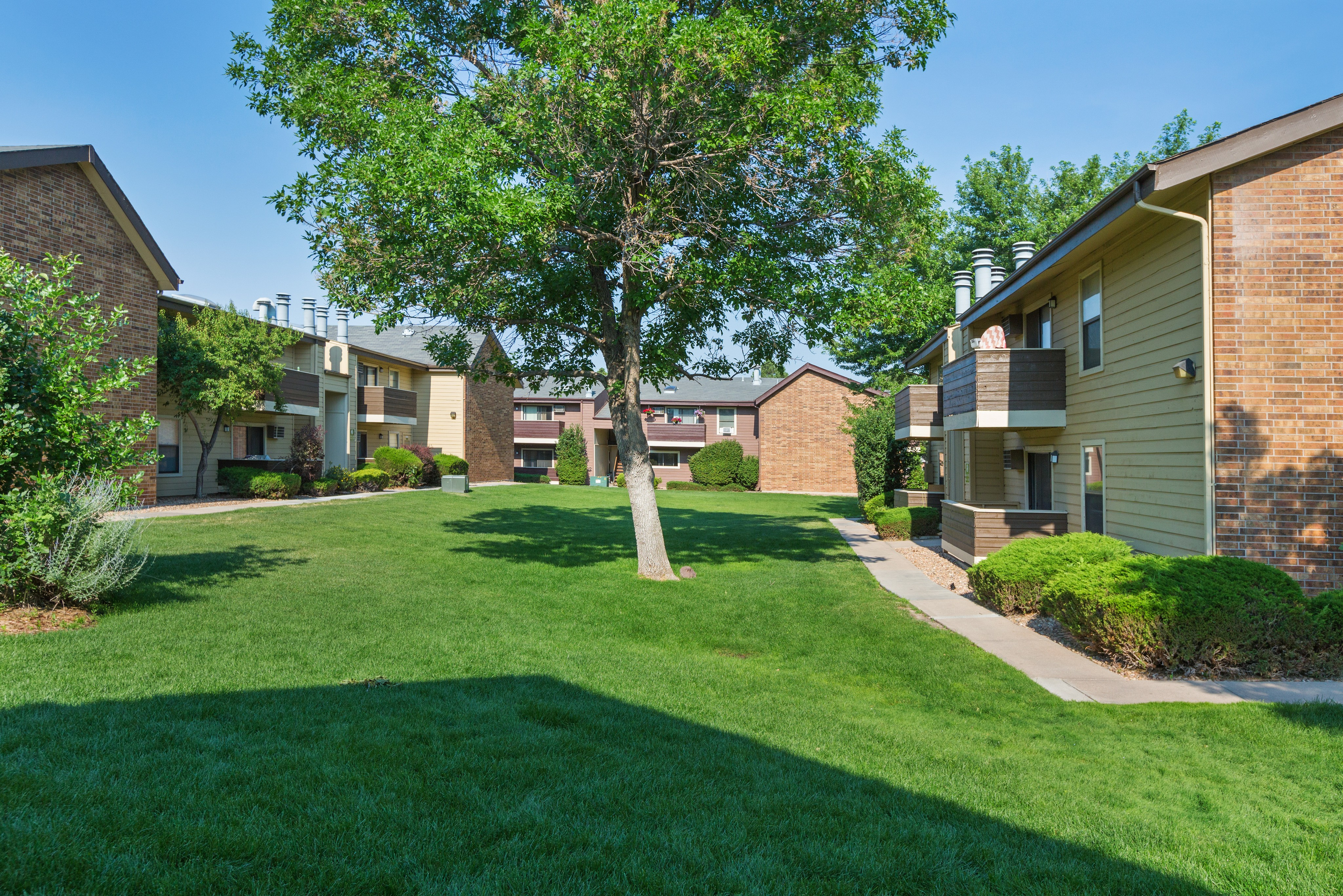 Torrey Pines Apartments rental
