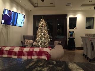 Private Room In Oak Forest   Garden Oaks, Houston