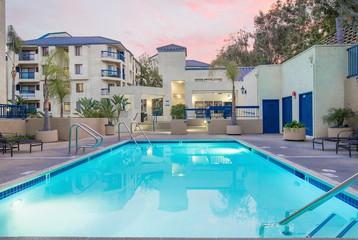 Apartment pet pool rent