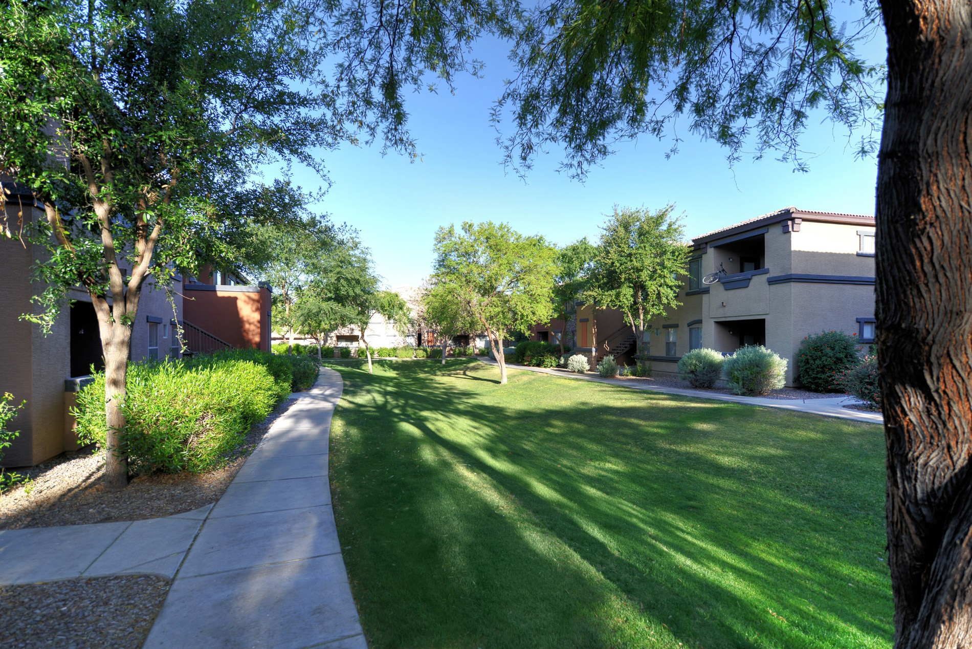 Coldwater Springs Apartments