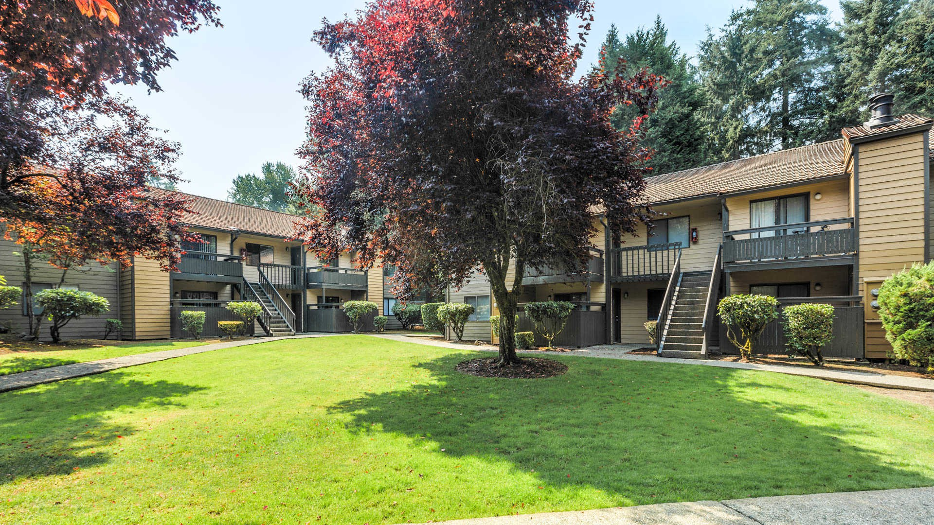 Apartments Near RTC Bellevue Meadows for Renton Technical College Students in Renton, WA