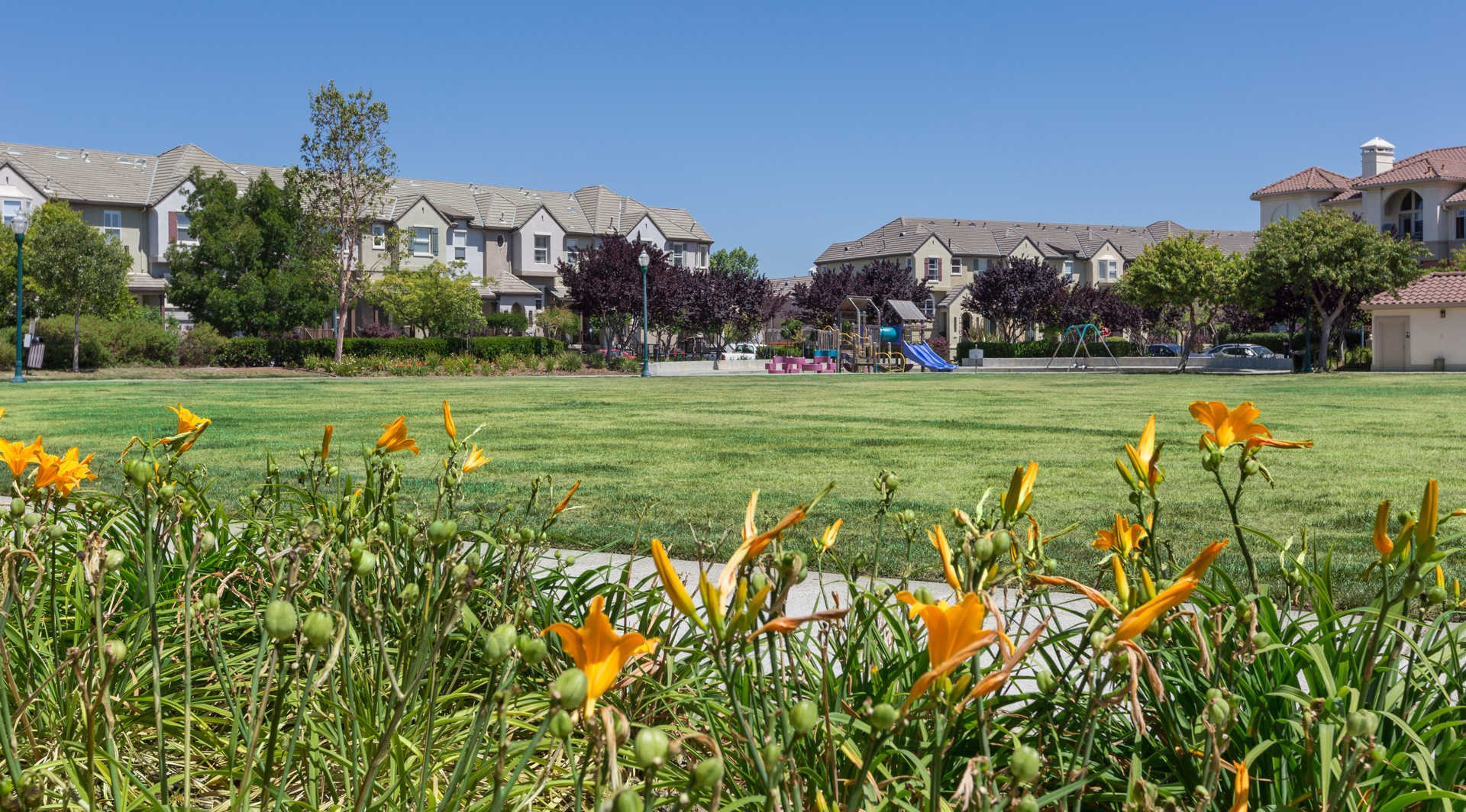 Park Place at San Mateo