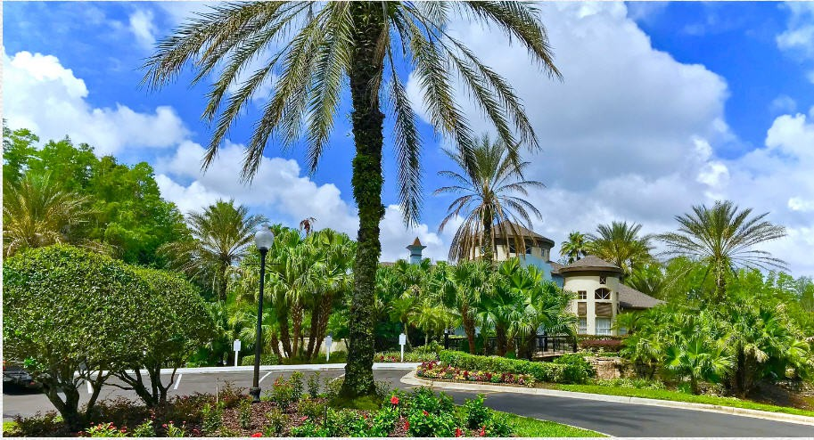 Apartments Near UT Falls at New Tampa for The University of Tampa Students in Tampa, FL