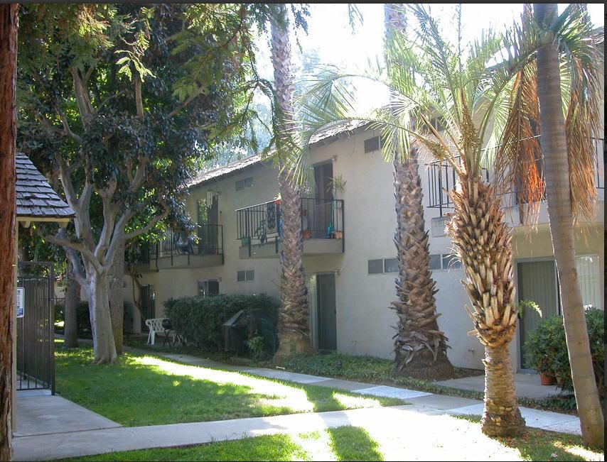 Palm Mesa