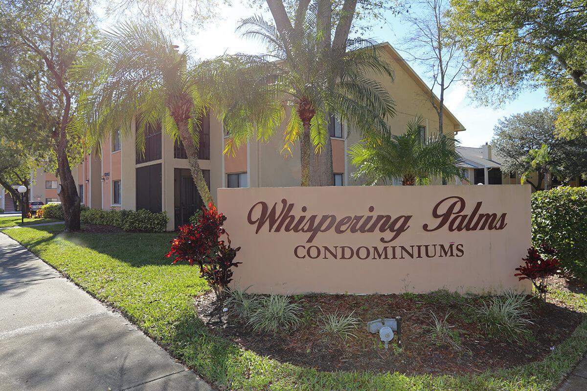Whispering Palms