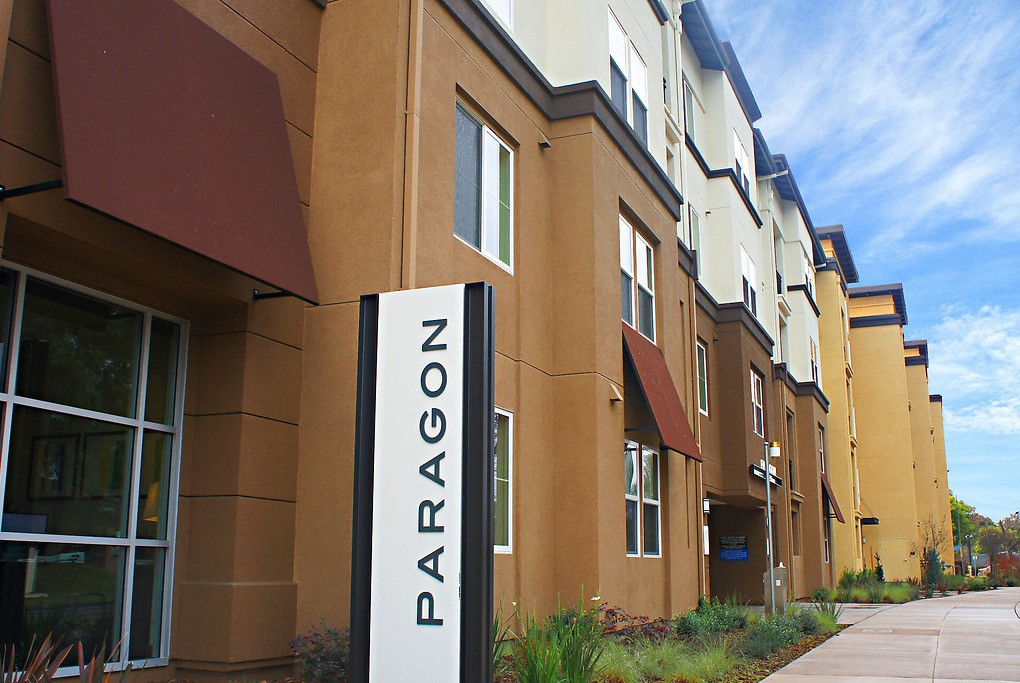 Paragon for rent