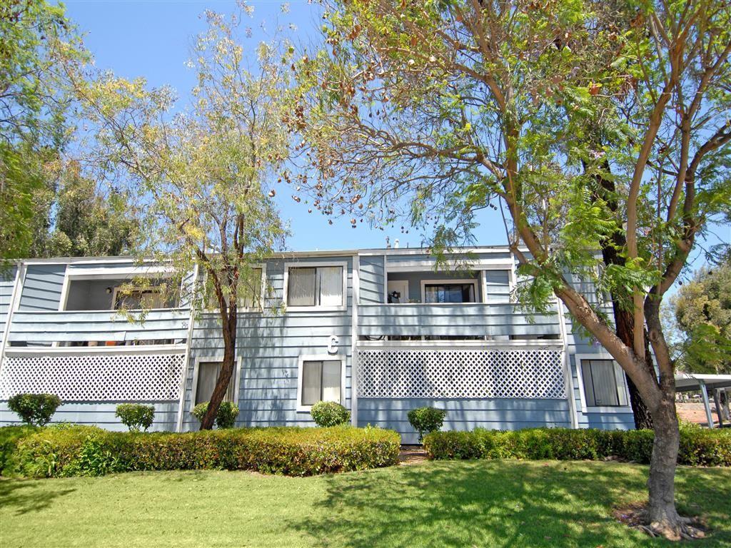 Calavo Woods Apartments rental