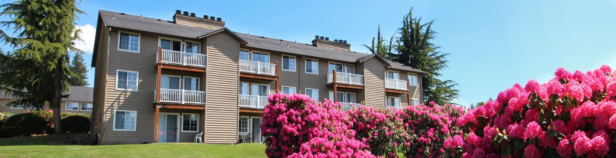 Black Lake Apartments rental