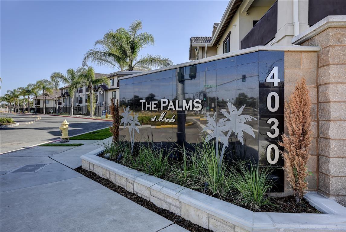 Palms at Morada