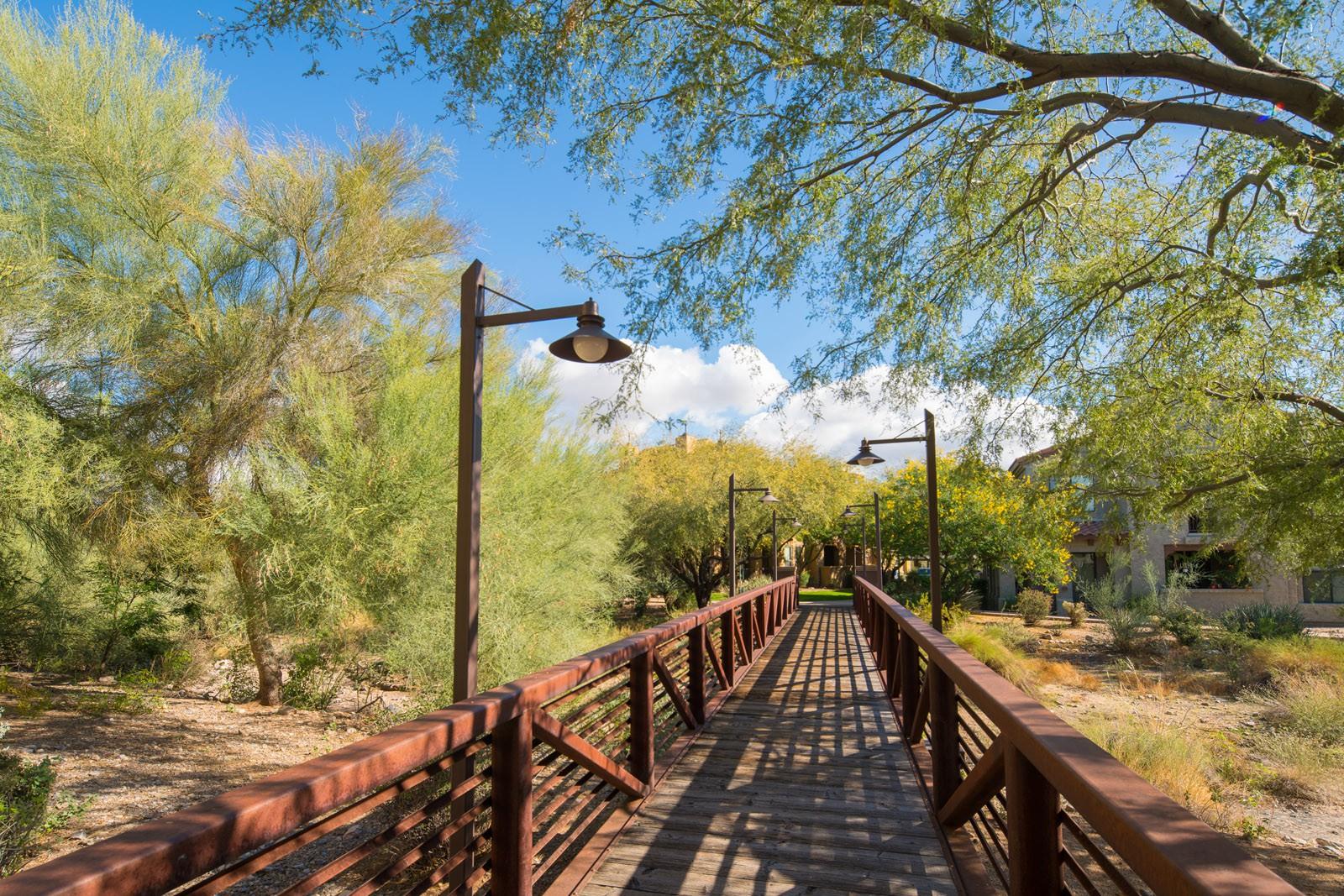 Desert Parks Vista