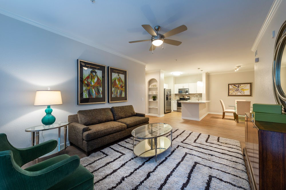 Apartments Near Houston San Paloma for Houston Students in Houston, TX