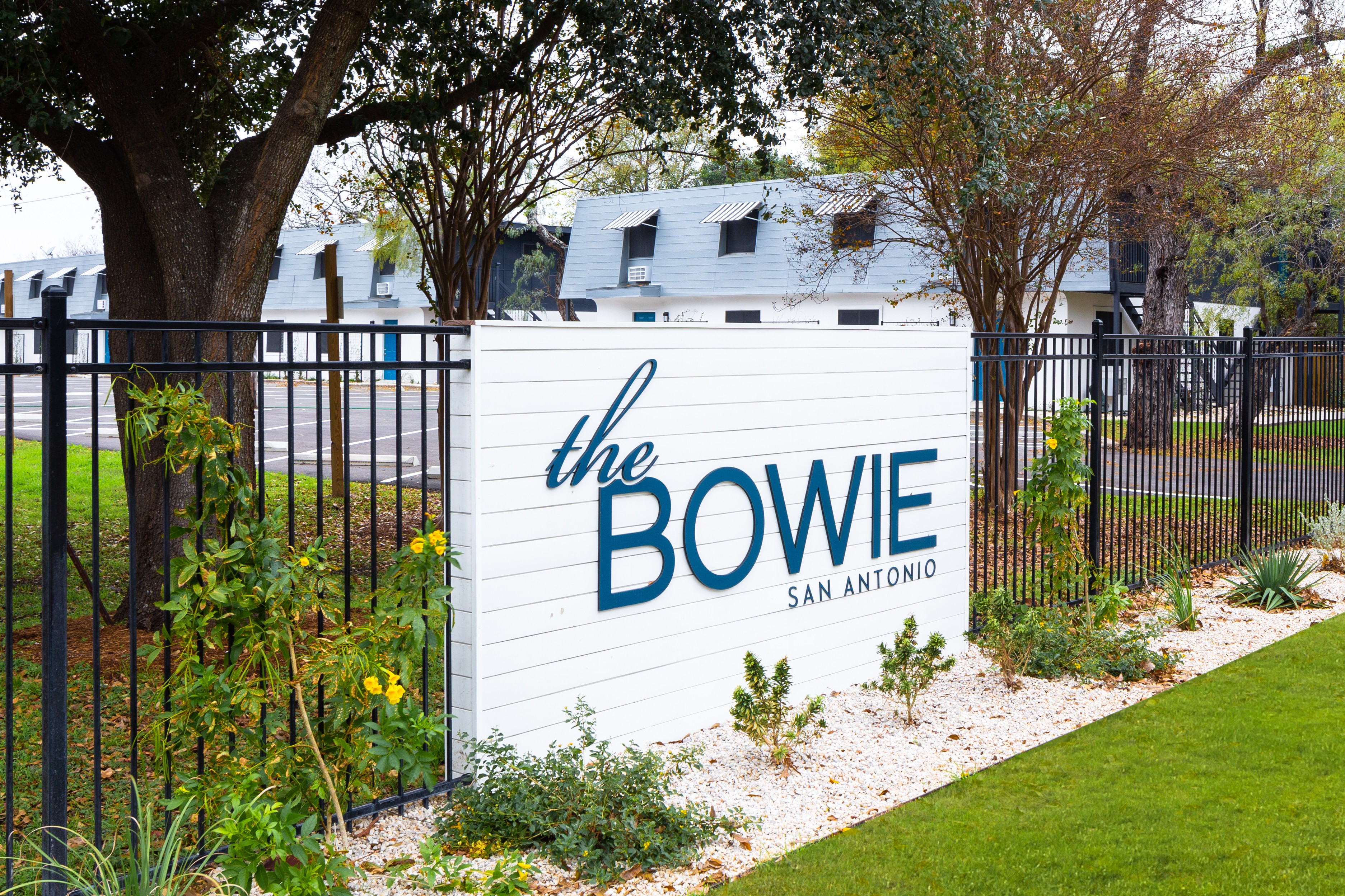 The Bowie