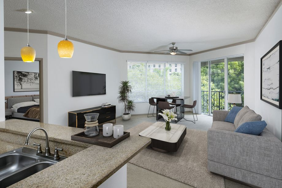 Apartments Near Barry Camden Aventura for Barry University Students in Miami Shores, FL