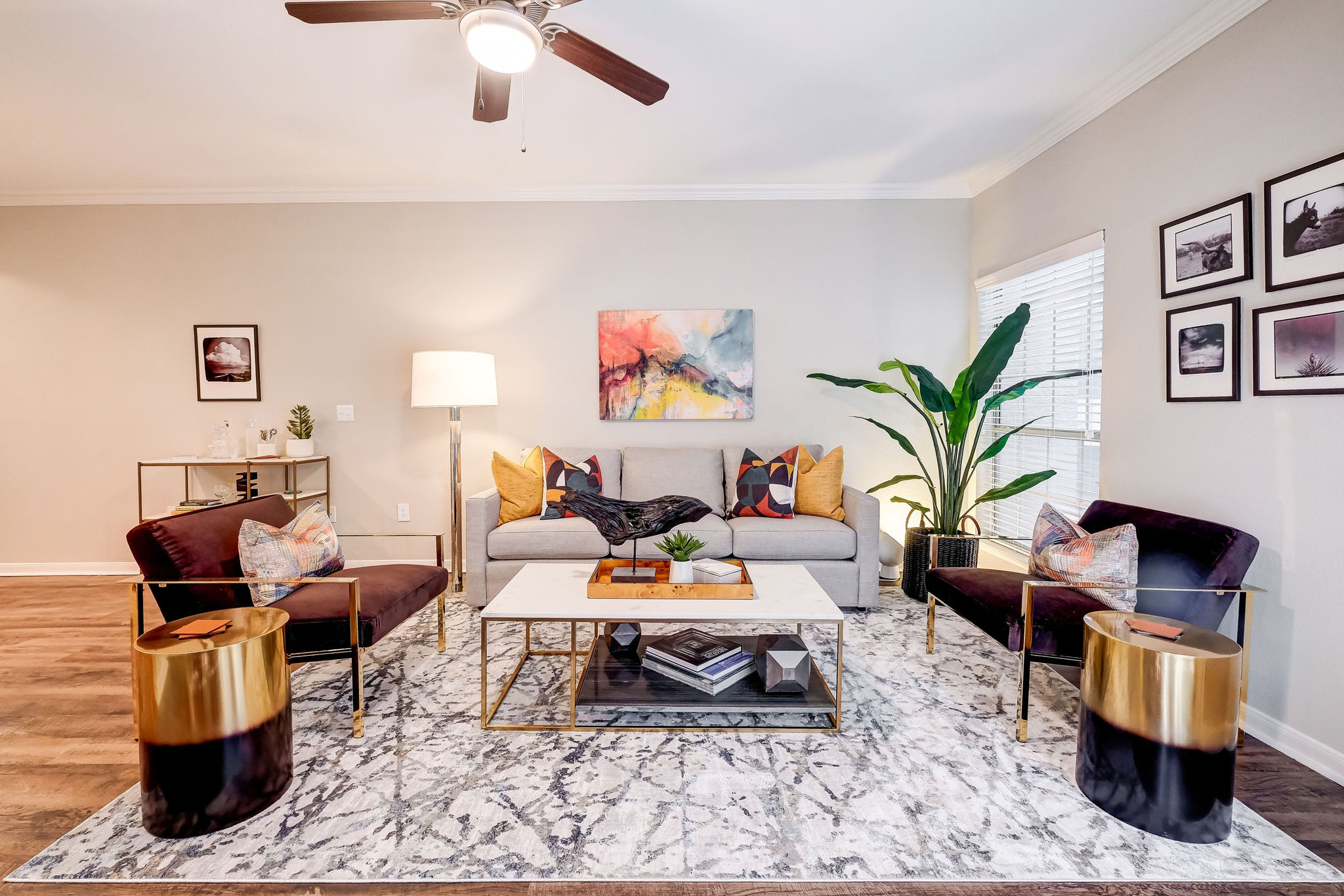 Apartments Near UT Austin Canyon Springs for University of Texas - Austin Students in Austin, TX