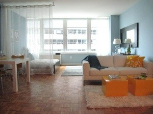 200 Water St #2308, New York, NY 10038 Studio Apartment for Rent for ...