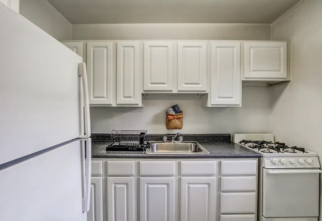 Washington and Lee Apartments for rent