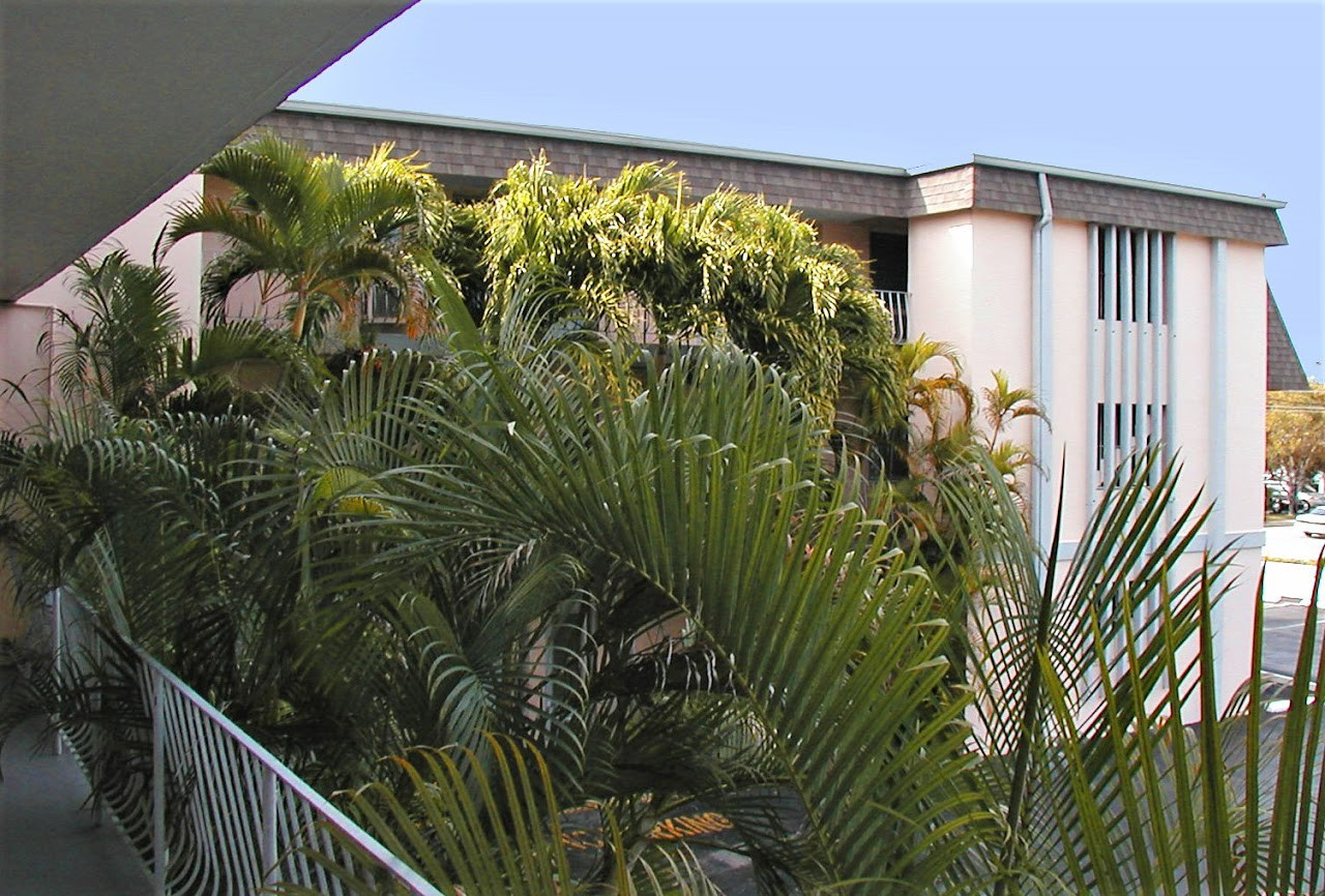 Palm Plaza Apartments for rent