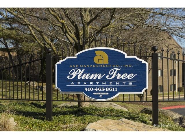 Plum Tree Apartments - Best Tree 2017